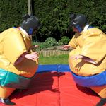 Party Sumo Wrestling