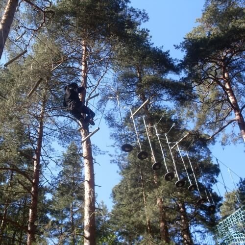 High Ropes Amsterdam Stag