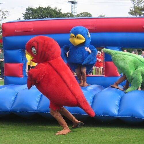 Party Its a Knockout Activities