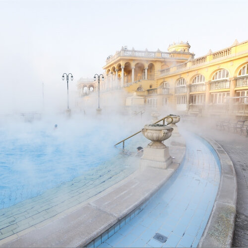 Thermal Baths Budapest Hen