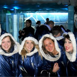 Hen Activities Ice Bar